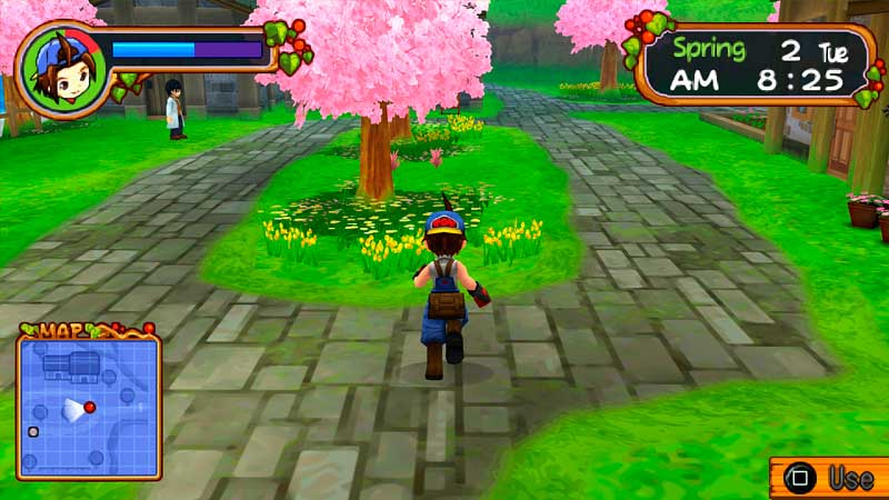Cheat Harvest Moon Hero of Leaf Valley PPSSPP